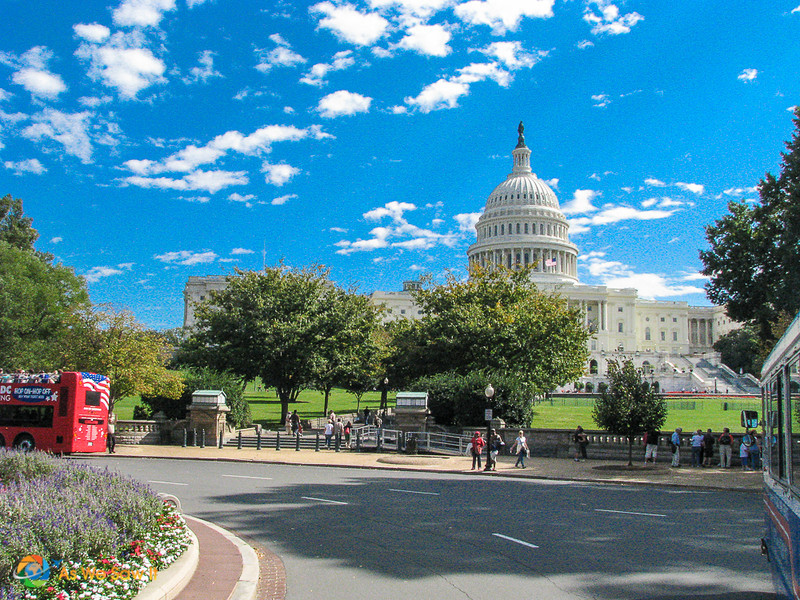 U.S. Capital building in background. Foreground: hop on hop off bus and trees