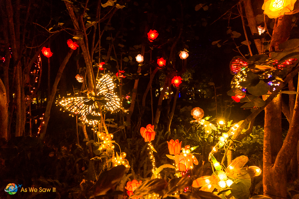Lights in Bloom at Marie Selby Botanical Gardens in Sarasota Florida