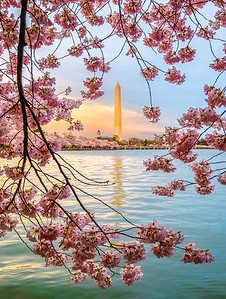 Washington Monument – Washington, D.C.