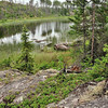 Quiet Lake Along the Gunflint