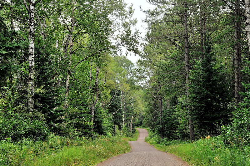 Gunflint Back Road