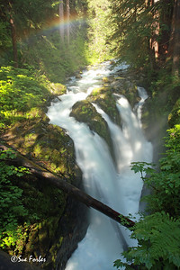 Rainbow at Sol Duc Falls Rainbow at Sol Duc Falls, Olympic National Park
