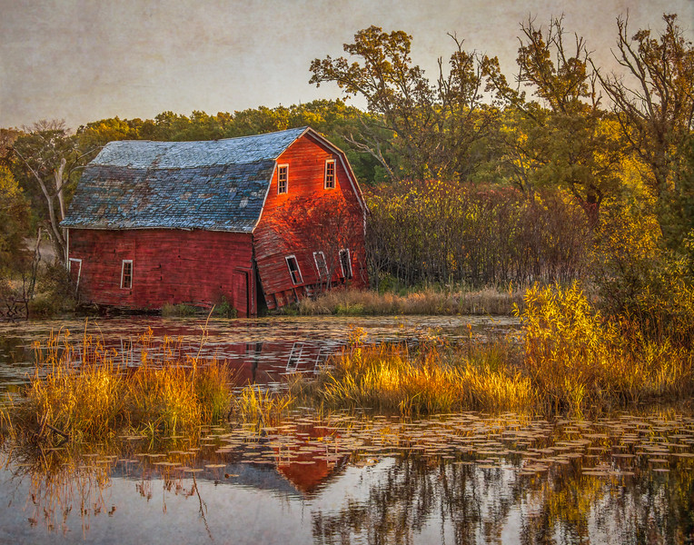 Falling in the water barn in fall