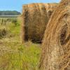 Giant Hay bales