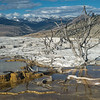Mammoth Hot Spring landscape with mountains