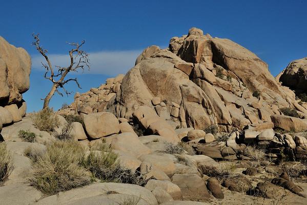 Rocky outcrop in Joshua Tree