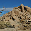 Rocky outcrop in Joshua Tree