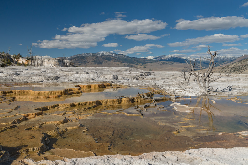Terraces and mountains at Yellowstone