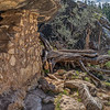Two ruins at Walnut Canyon