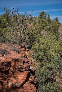 Baldwin Trail Sedona AZ ExplorationVacation