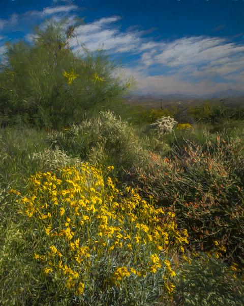 Watercolor wildflowers