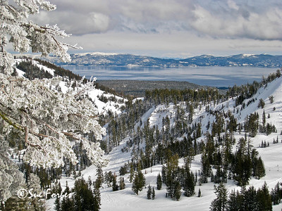 Lake Tahoe in Winter Snowy scene of Lake Tahoe from Alpine Meadows, California