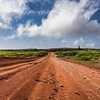 Roads on Lana'i are limited