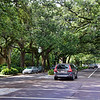 Esplanade Ave. - the original Garden District