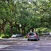 Esplanade Ave. - the original Garden District