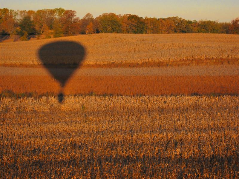 Floating Through Fall