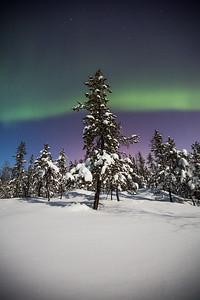 Aurora Nights IV, Yellowknife area, Northwest Territories.