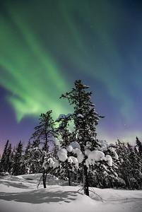 Aurora Nights XIV, Nights of Wonder workshop 2015, Yellowknife area, Northwest Territories.