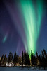 Aurora Borealis over trees, Yellowknife