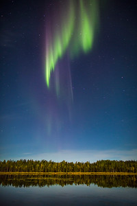 """Grasp of the North""  Aurora over Vee Lake. Fall 2014."