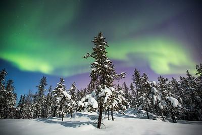 Aurora Nights XIII, Yellowknife area, Northwest Territories.