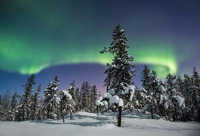 Aurora Nights III, Yellowknife area, Northwest Territories.