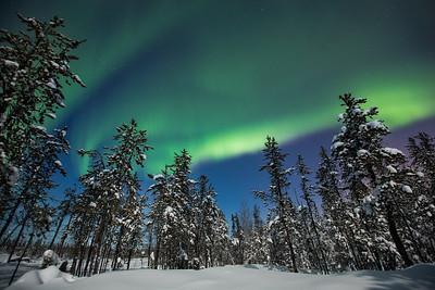 Aurora Nights II, Yellowknife area, Northwest Territories.