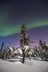 Aurora Nights VI, Yellowknife area, Northwest Territories.