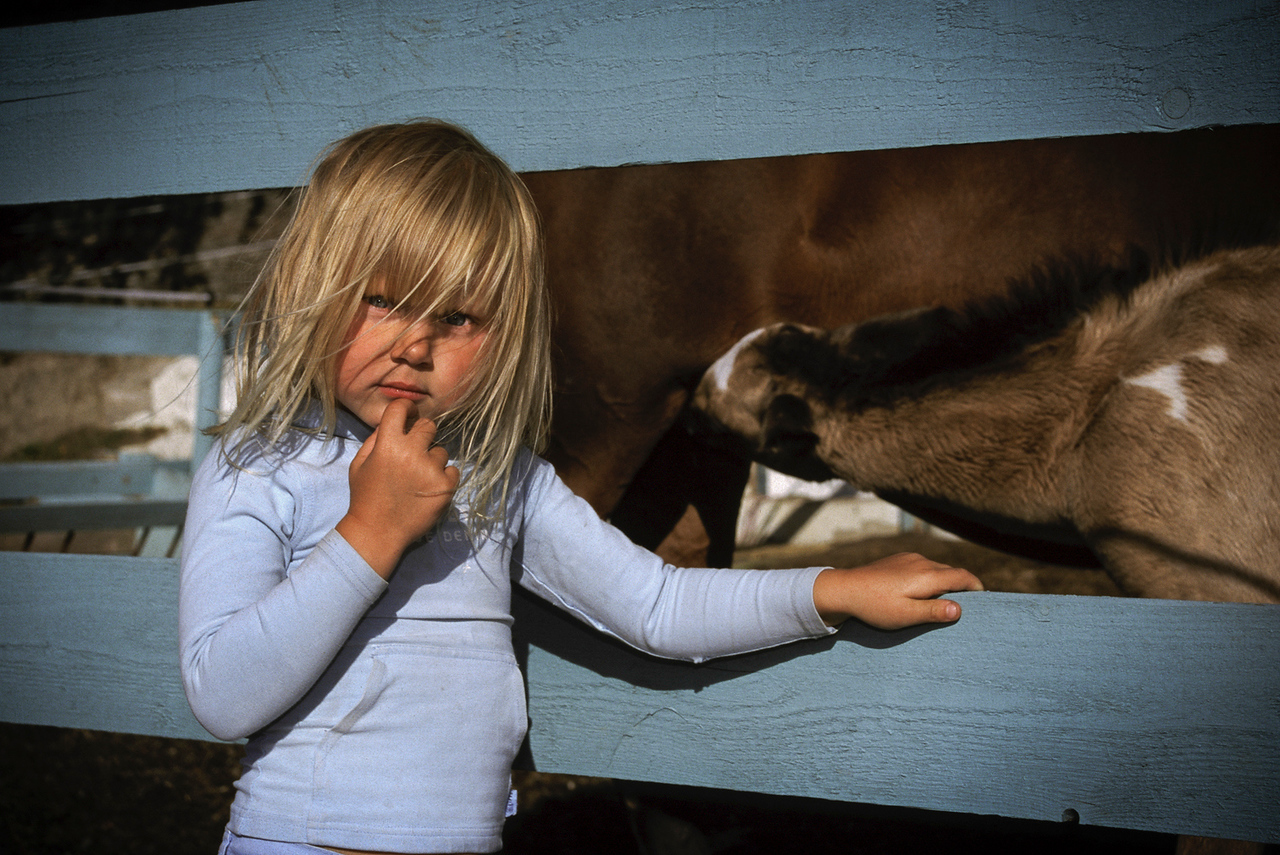 Girl at a farm.<br /> <br /> Oslo, Norway, 2000.