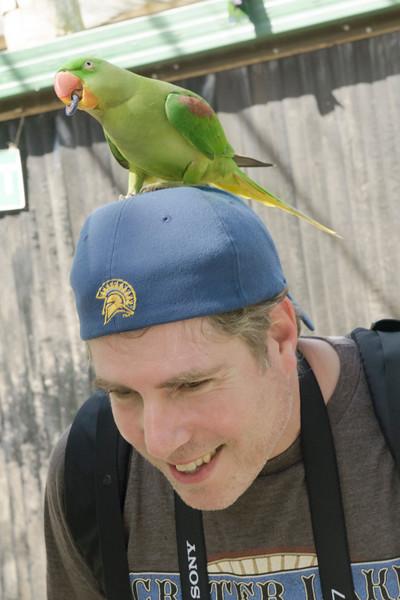 Kuranda, Australia - Birdworld
