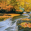 Brandywine Creek in Autumn