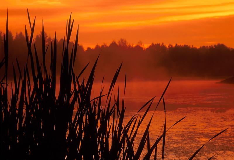 Sunrise over Horseshoe Pond