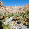Oman, Jebel Shams - Wadi Ghul, the Grand Canyon of Arabia