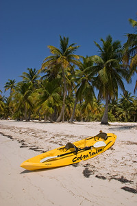 Kayak on the beach with coconut trees.