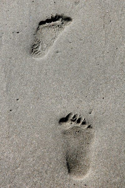 Kyles footprints in the sand.