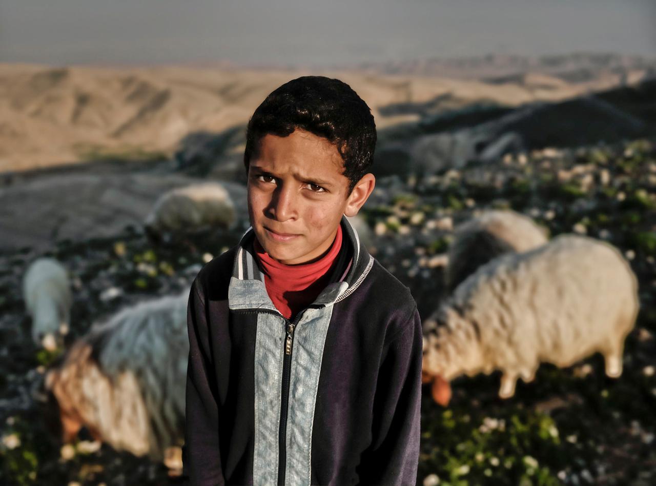 Palestinian, muslim Sheppard boy.