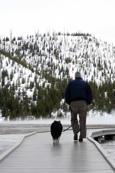 Dad walking Cassie at Yellowstone National Park, April 2013.