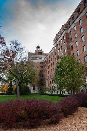 Rochester MN & Mayo Clinic