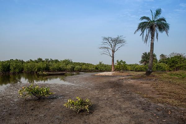 Casamance, senegal, 2020