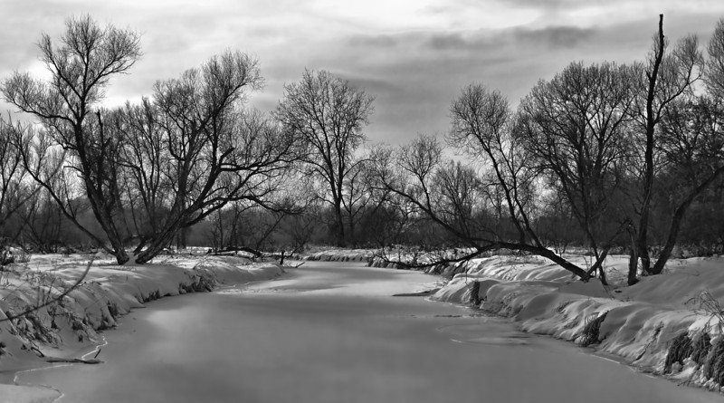 Frozen Rice Creek, Arden Hills, Mn., #0589