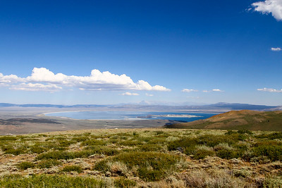 9800 feet, overlooking Mono Lake from the Northwest