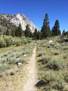 Exploring the trails along Rock Creek
