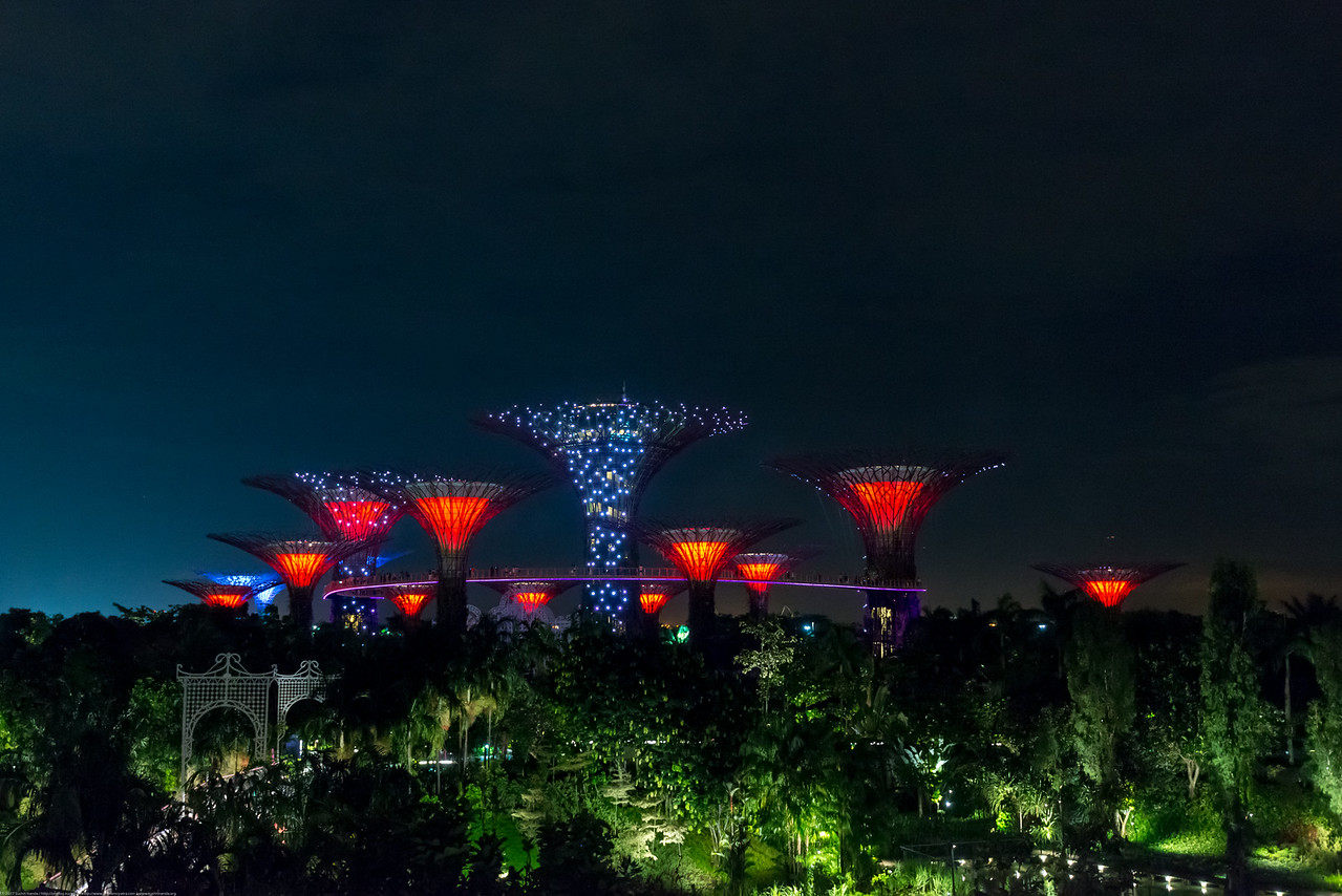 Singapore: The Supertree Grove at Gardens by the Bay