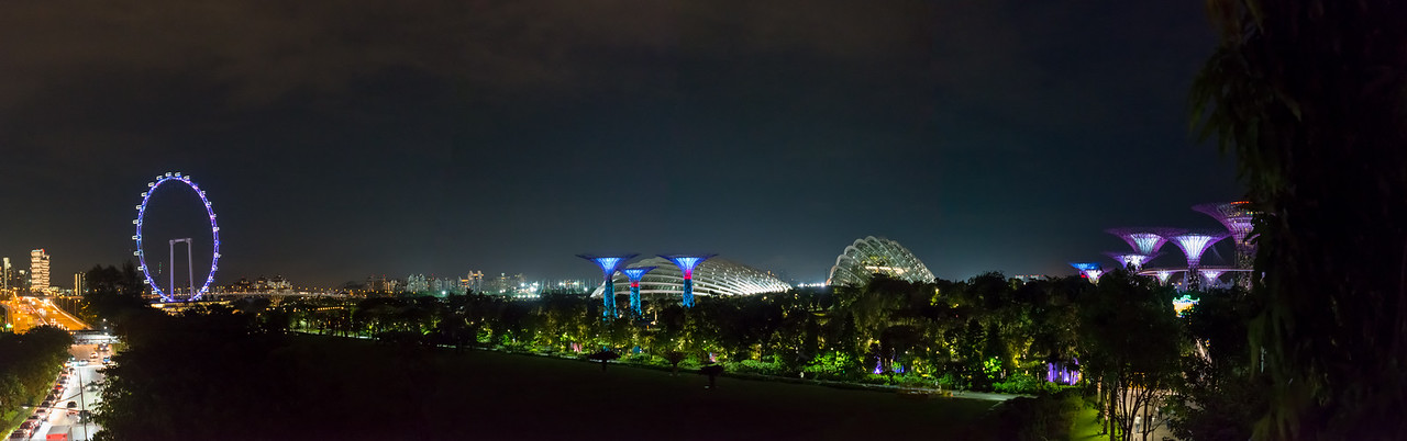 Panoramic Singapore: The Supertree Grove at Gardens by the Bay