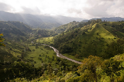 """Green Serenity""  The Cocora Valley - La Valle de Cocora"
