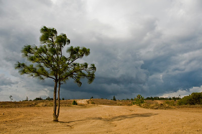 A look at the incoming storm heading in over there desert.