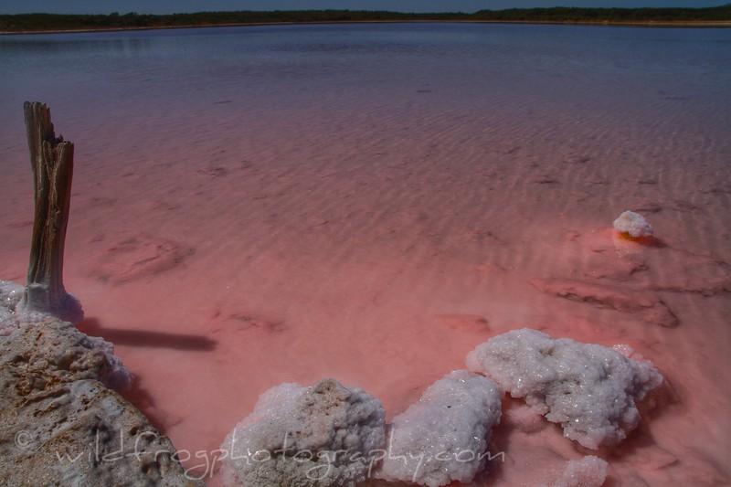 Pink lake, Coorong National Park