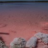 Pink lake, Coorong National Park