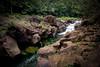 Marmites de la rivière Bleue, Grande Randonnée 1, Parc Naturel de la Rivière Bleue, Grande Terre, New Caledonia.