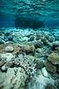 """Between Worlds"" VI, Avatele Bay, Niue."